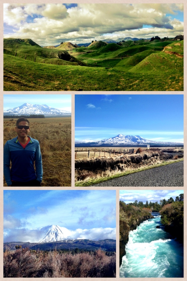 NZ collage